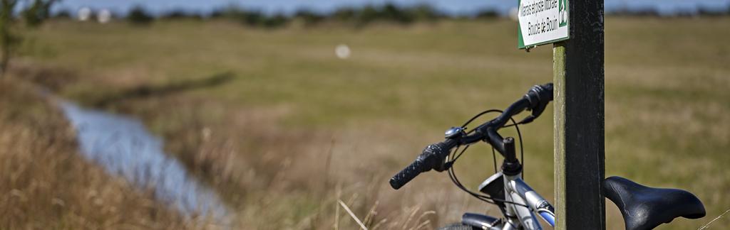Balade en vélo - Go Challans Gois